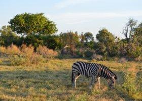zimbabwe-a-botswana-dve-perly-v-africe-015.jpg