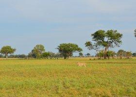 zimbabwe-a-botswana-dve-perly-v-africe-016.jpg