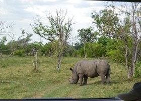 zimbabwe-a-botswana-dve-perly-v-africe-017.jpg