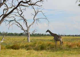 zimbabwe-a-botswana-dve-perly-v-africe-018.jpg