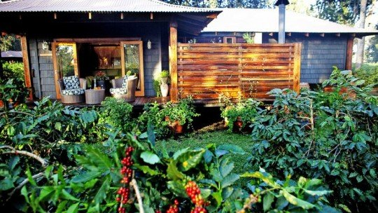 Arusha Coffee Lodge ****