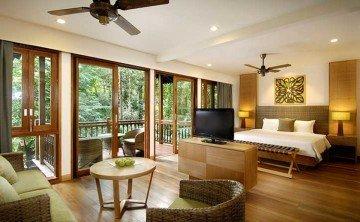 Rainforest Studio