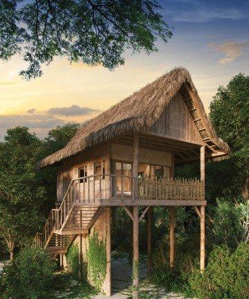 Treetop Villa
