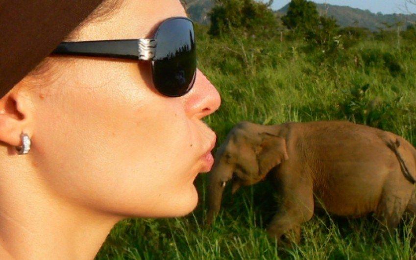 Srí Lanka, duben a květen 2012