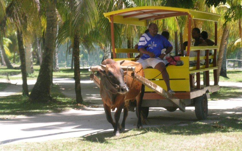 Cesta na Seychely, Jindřiška Jelínková - září 2008