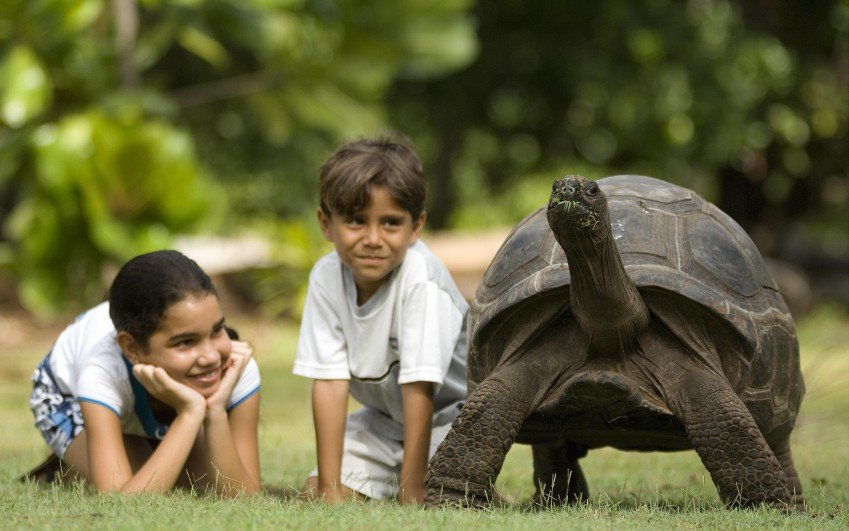 Aldabra a další perly Indického oceánu